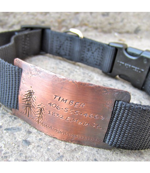 "Timber quiet collar tag pictured on 1"" wide collar"