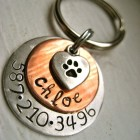 The Chloe Pet ID Tag