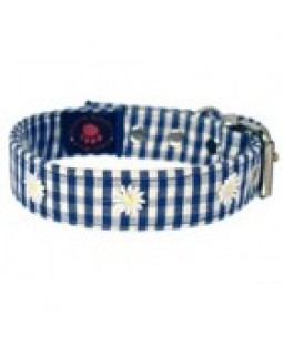 Creature Clothes Blue Daisy Gingham Canvas Dog Collar