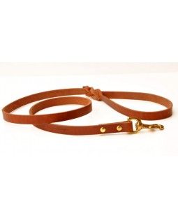 Bold Golden Tan Leash