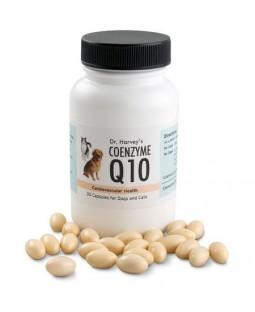 Dr. Harvey's Coenzyme Q10