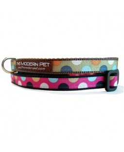 Disco Dot Toy Dog Collar - JUST 1 LEFT!