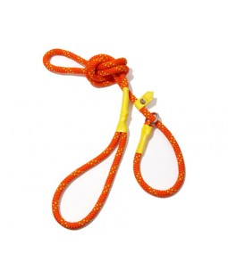 All-In-One Collar & Leash - Orange