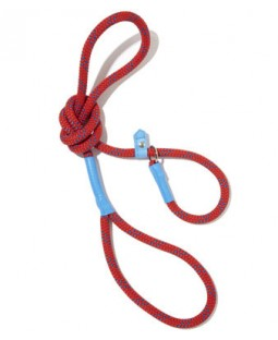 All-In-One Collar & Leash - Red
