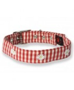 Creature Clothes Red Daisy Gingham Canvas Dog Collar