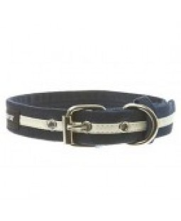 Reflective Dog Collar & Leash - Wagwear/Navy