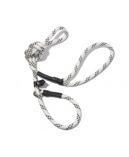 All-In-One Collar & Leash - White