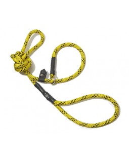 All-In-One Collar & Leash - Yellow